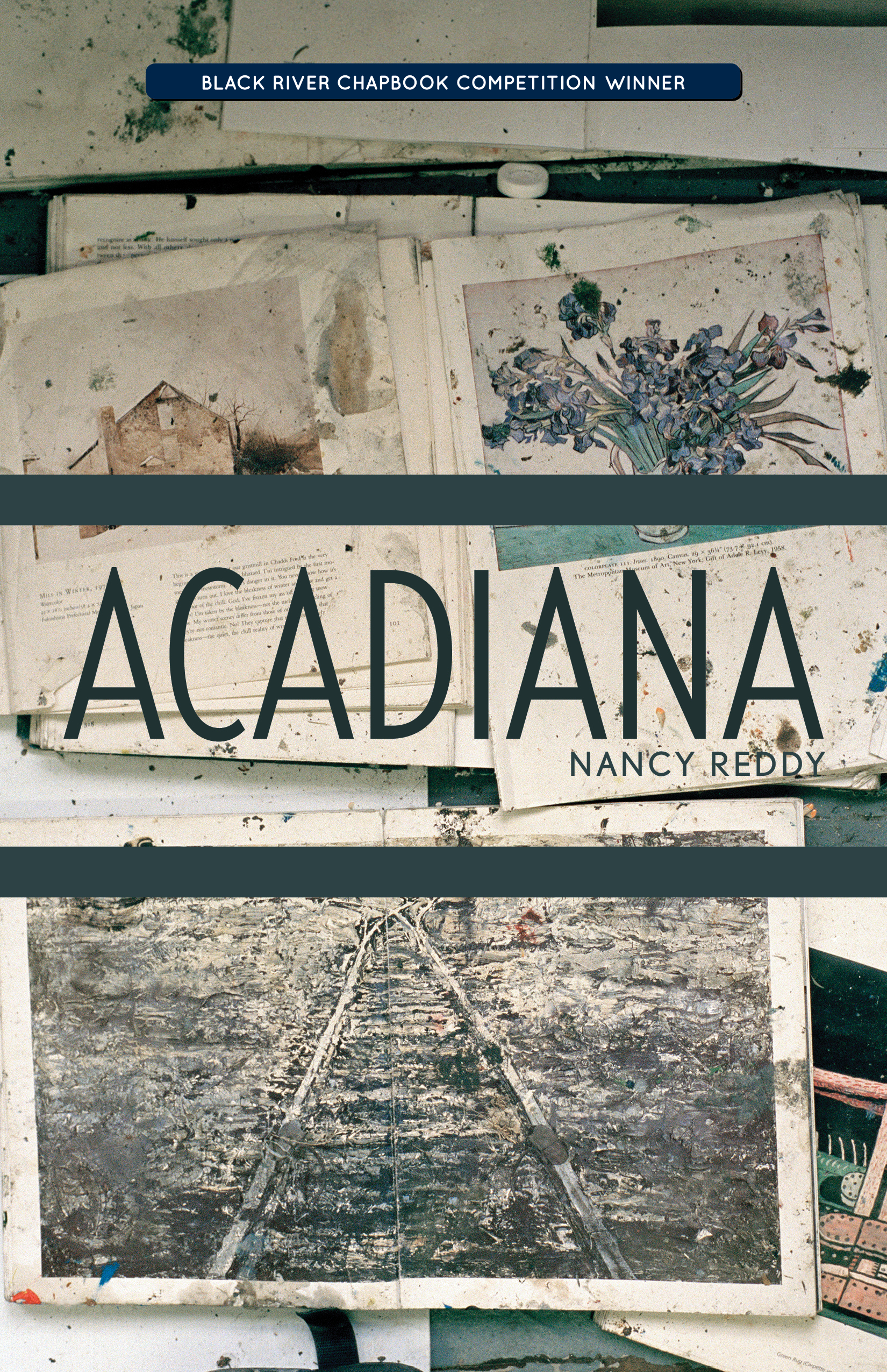 Nancy Reddy On Acadiana The Cloudy House